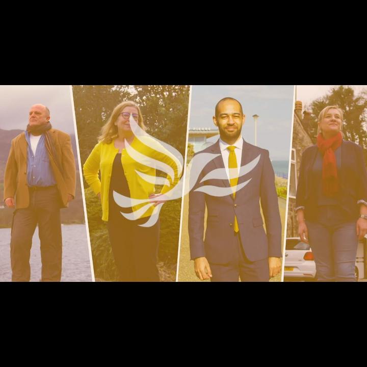 Liberal Democrat Superheroes and Activists